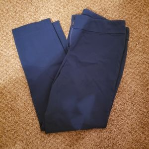 Womens ANN TAYLOR Signature Ankle Pants Size 4P